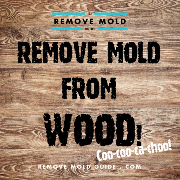 Remove Mold From Wood Guide To Mold Removal - Bathroom mold killer