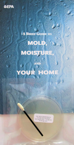 Mold-and-moisture