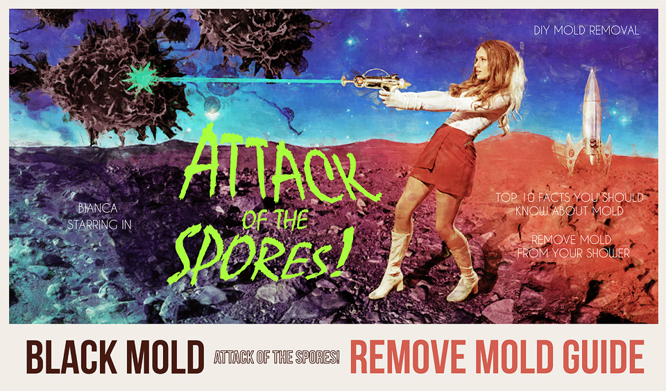 remove black mold