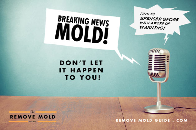 mold-in-the-news