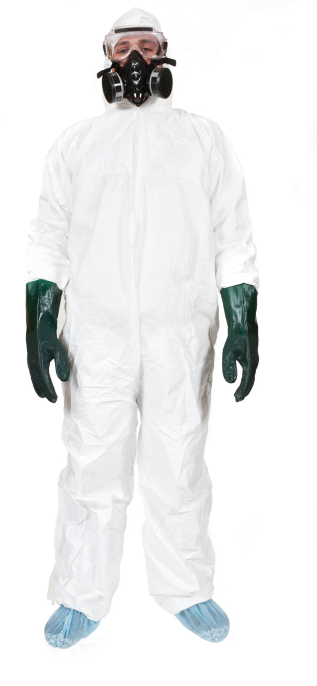 Mold Removal Safety Gear